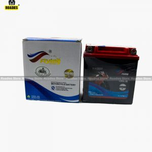 motorcycle dry battery