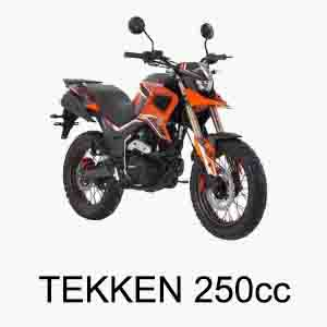 tekken 250 bike parts
